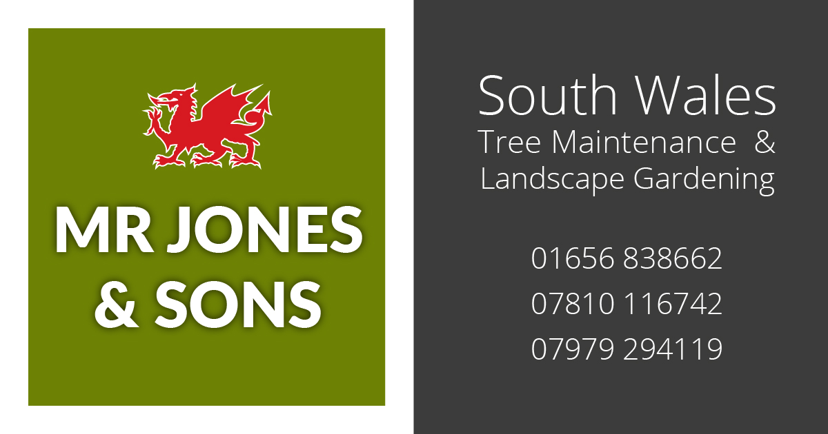 About mr jones sons south wales tree landscape gardeners workwithnaturefo